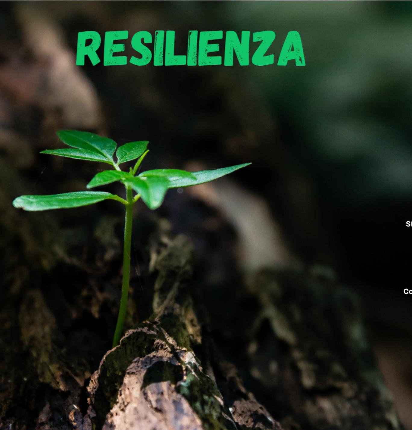Allena la resilienza